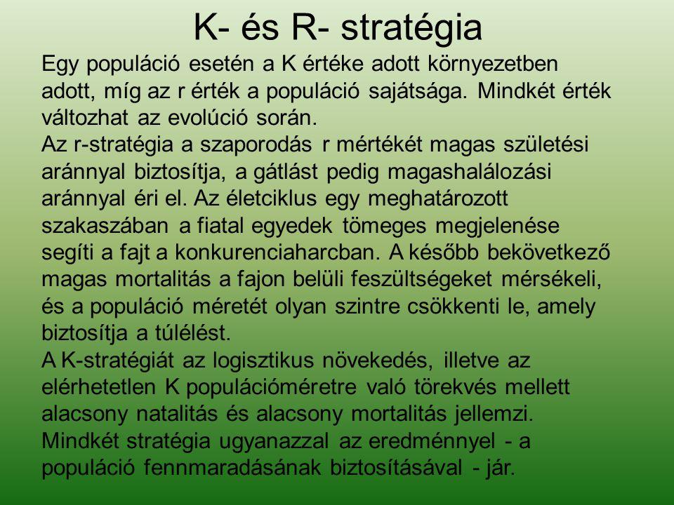 K- és R- stratégia
