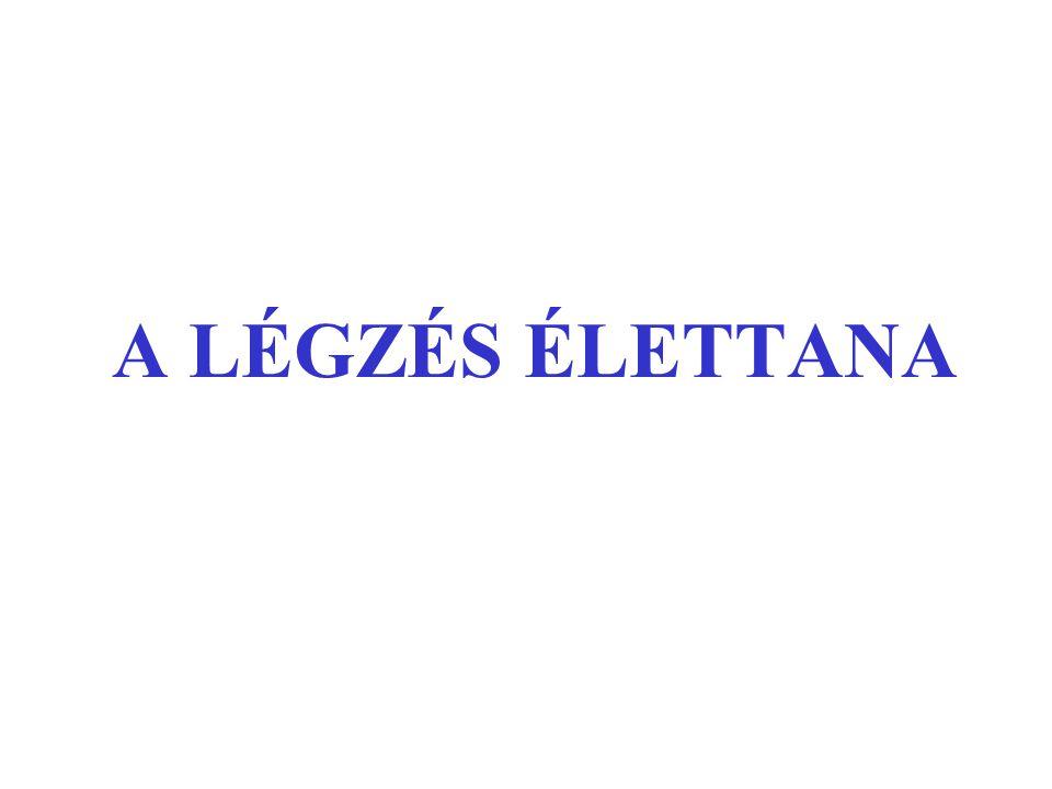 A LÉGZÉS ÉLETTANA