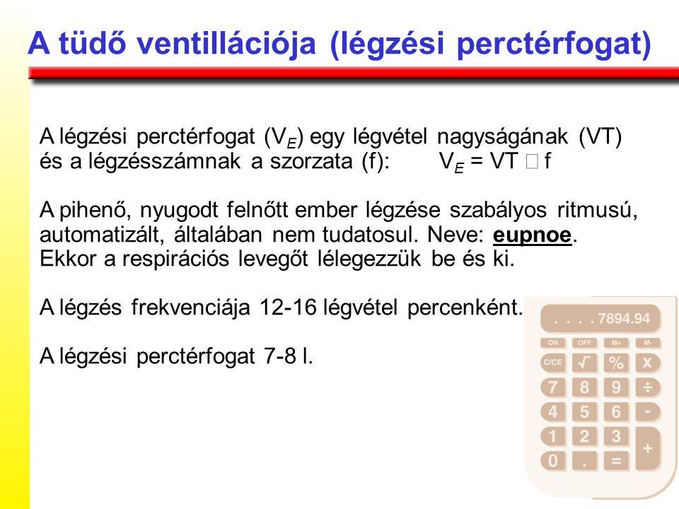 A tüdő ventillációja (légzési perctérfogat)