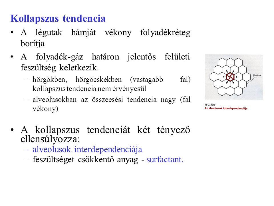 A kollapszus tendenciát két tényező ellensúlyozza: