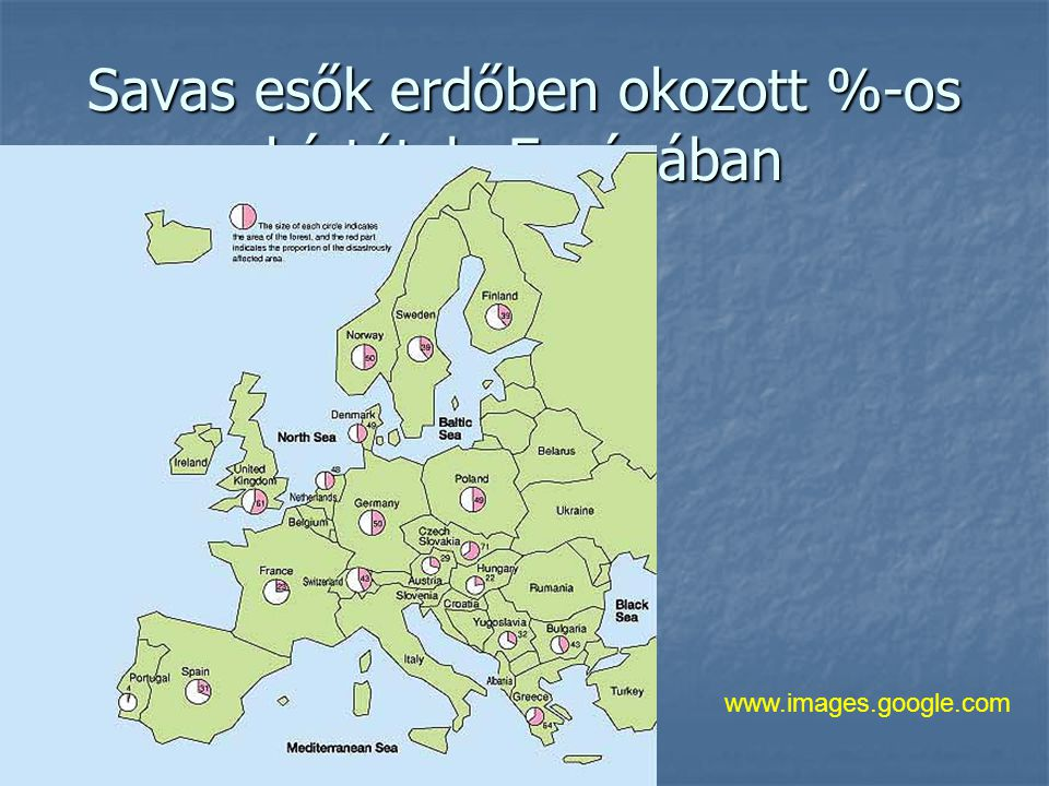 Savas esők erdőben okozott %-os kártétele Európában