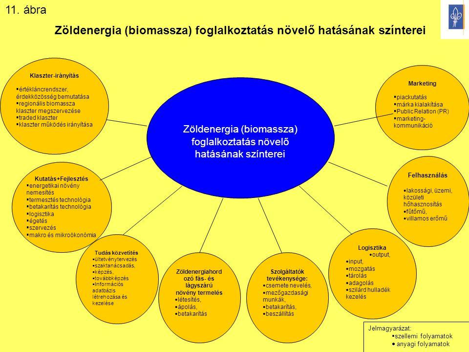 Zöldenergia (biomassza) foglalkoztatás növelő hatásának színterei