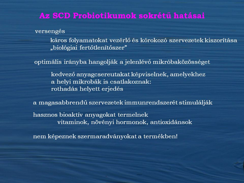 Az SCD Probiotikumok sokrétű hatásai