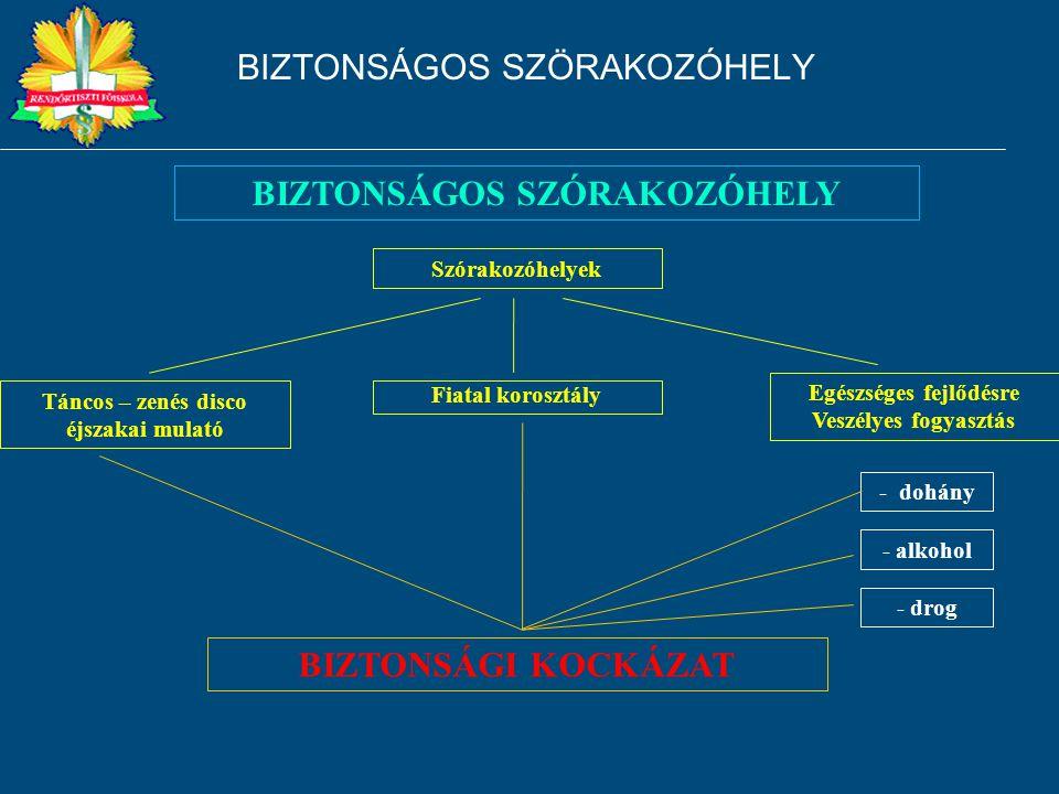 BIZTONSÁGOS SZÖRAKOZÓHELY