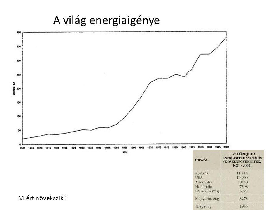 A világ energiaigénye Miért növekszik