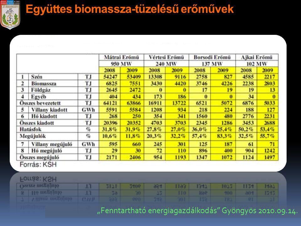 Együttes biomassza-tüzelésű erőművek