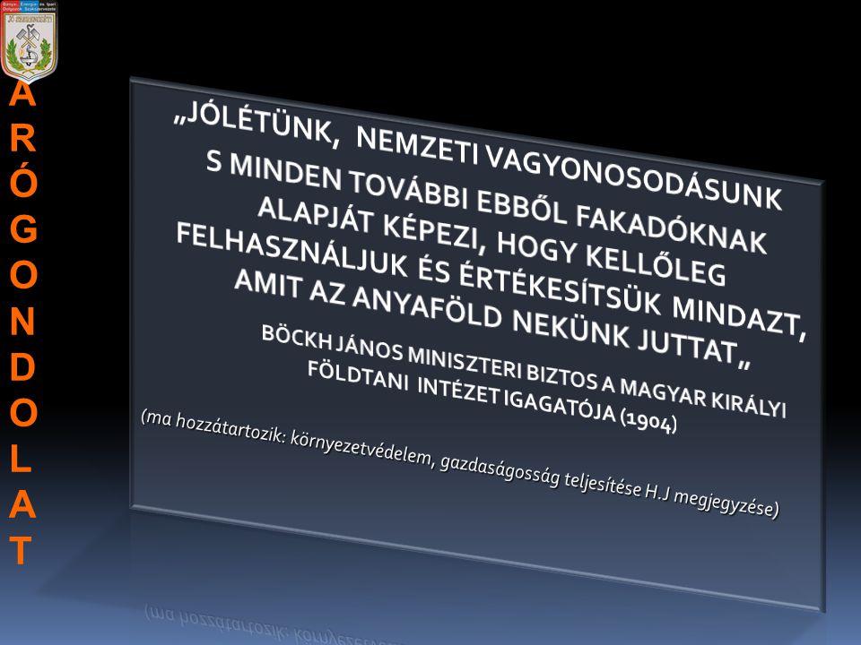 """""""JÓLÉTÜNK, NEMZETI VAGYONOSODÁSUNK"""