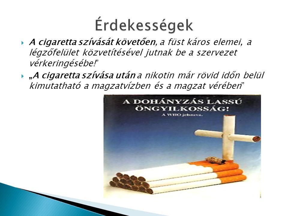 Érdekességek A cigaretta szívását követően, a füst káros elemei, a légzőfelület közvetítésével jutnak be a szervezet vérkeringésébe!