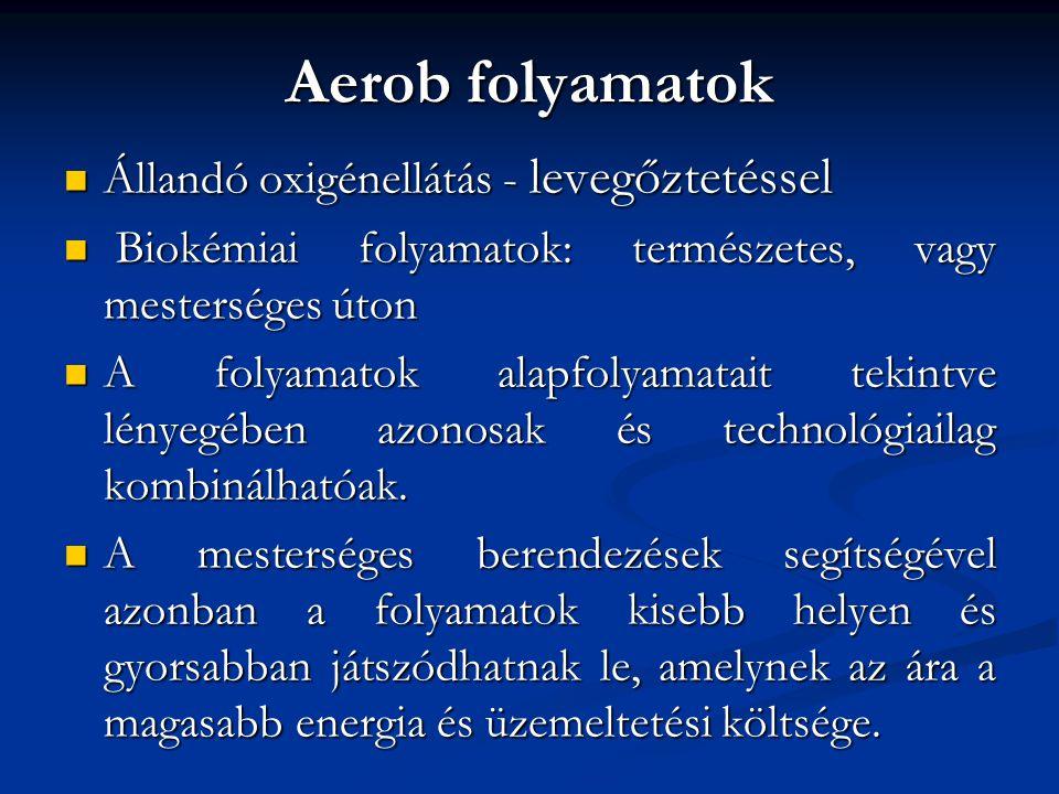 Aerob folyamatok Állandó oxigénellátás - levegőztetéssel
