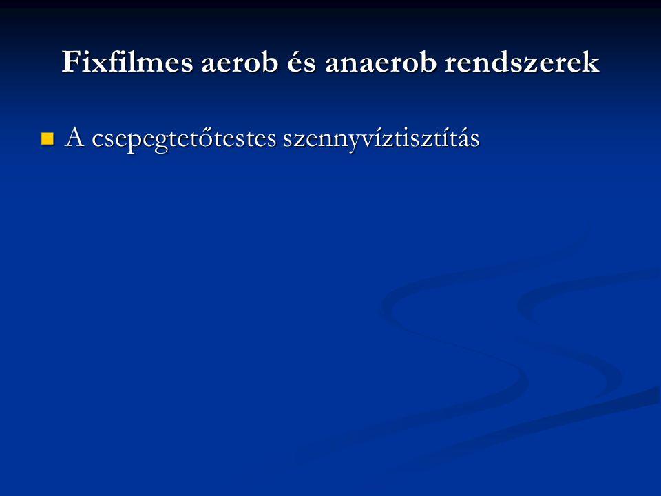 Fixfilmes aerob és anaerob rendszerek
