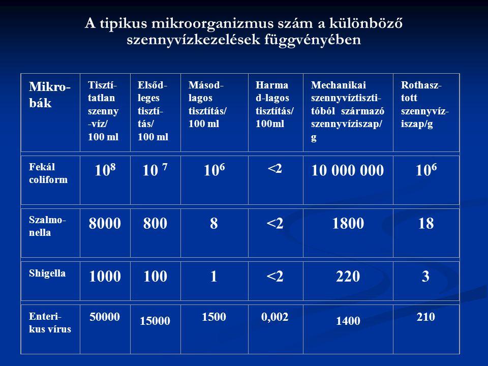 A tipikus mikroorganizmus szám a különböző szennyvízkezelések függvényében