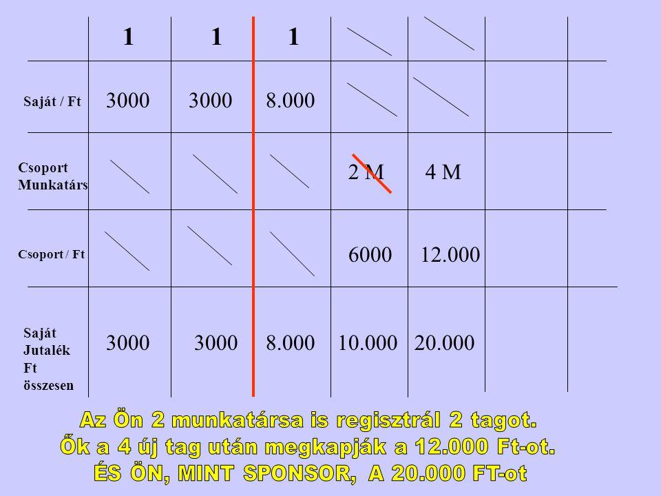 1 1. 1. 3000. 3000. 8.000. Saját / Ft. Csoport Munkatárs. 2 M. 4 M. 6000. 12.000. Csoport / Ft.