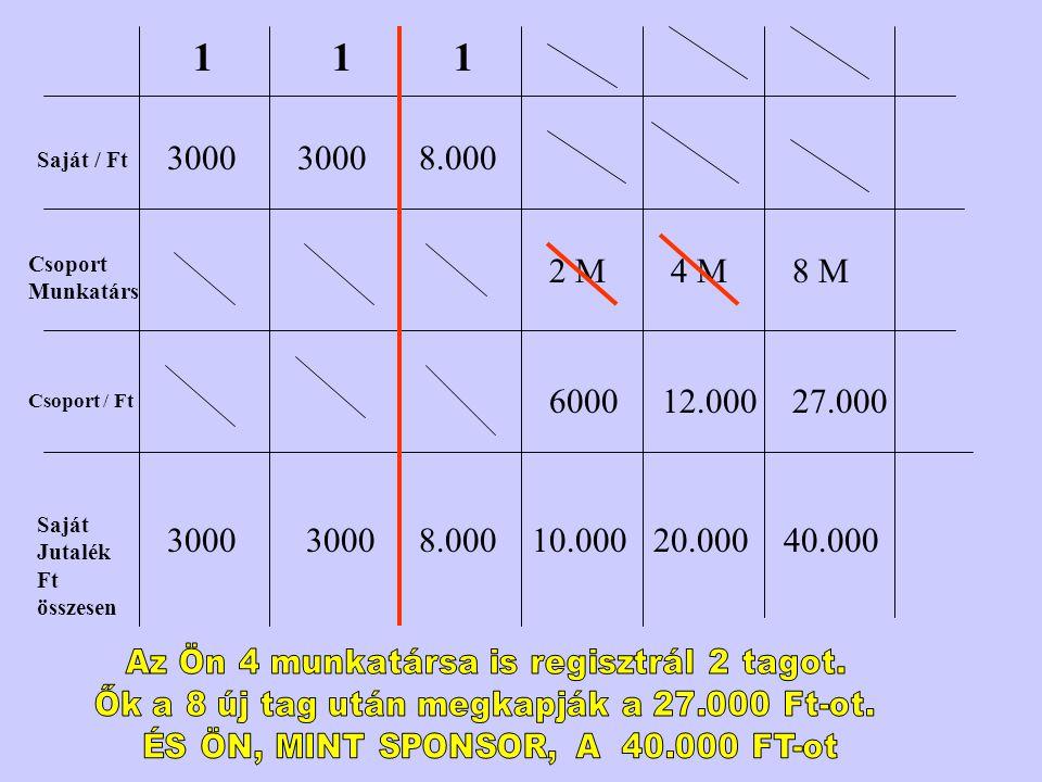 1 1. 1. 3000. 3000. 8.000. Saját / Ft. Csoport Munkatárs. 2 M. 4 M. 8 M. 6000. 12.000. 27.000.