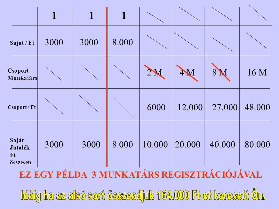 Idáig ha az alsó sort összeadjuk 164.000 Ft-ot keresett Ön.