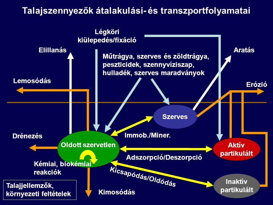 Talajszennyezők átalakulási- és transzportfolyamatai