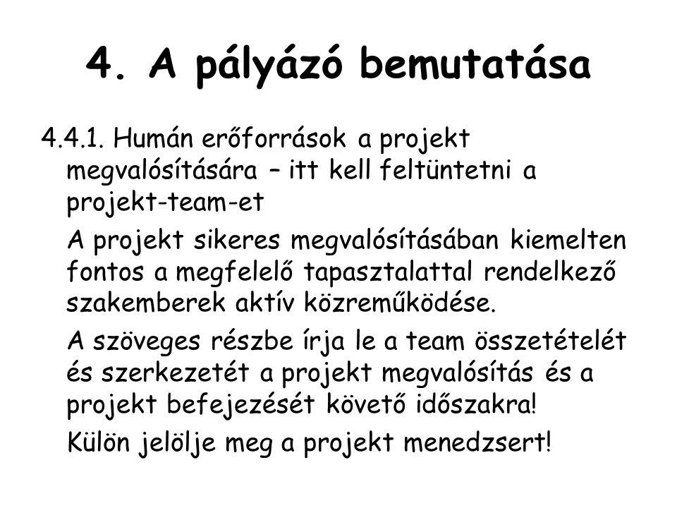 4. A pályázó bemutatása 4.4.1. Humán erőforrások a projekt megvalósítására – itt kell feltüntetni a projekt-team-et.