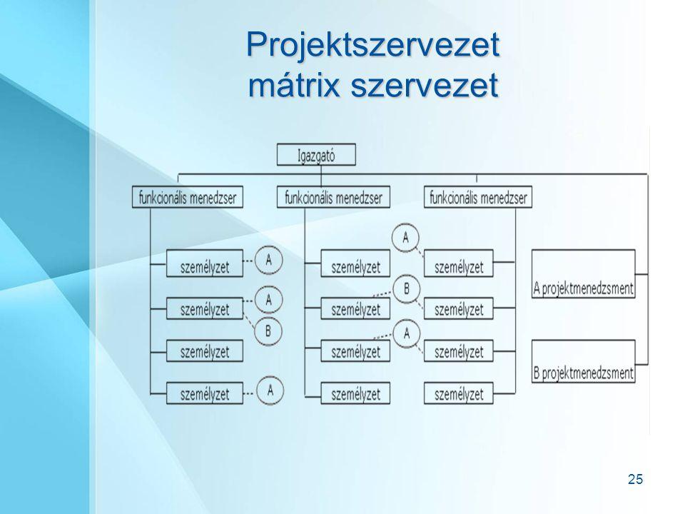 Projektszervezet mátrix szervezet