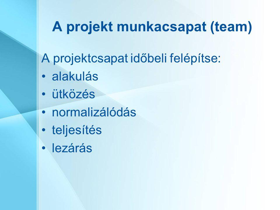 A projekt munkacsapat (team)