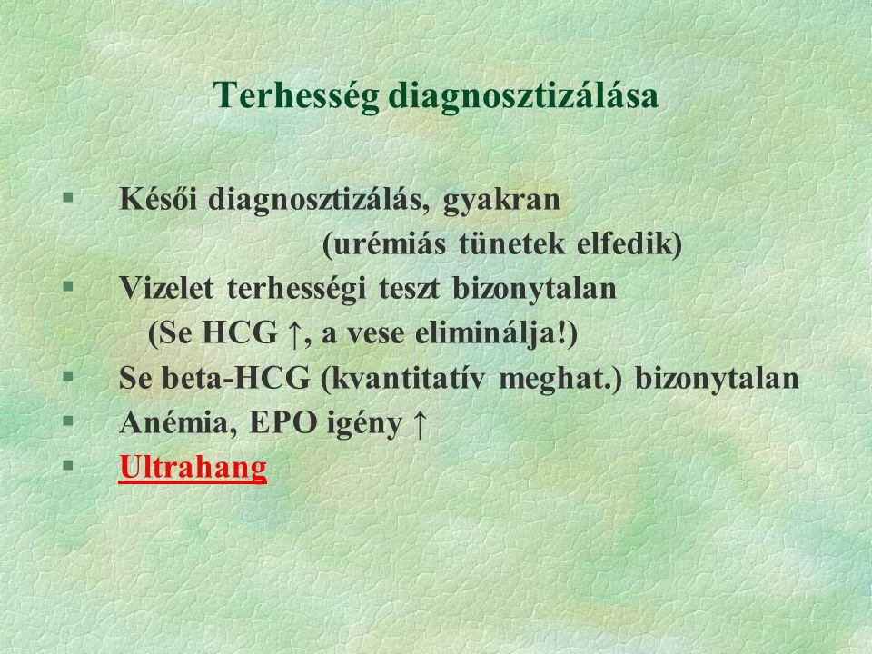 Terhesség diagnosztizálása