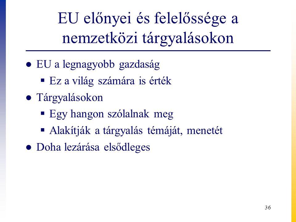 EU előnyei és felelőssége a nemzetközi tárgyalásokon