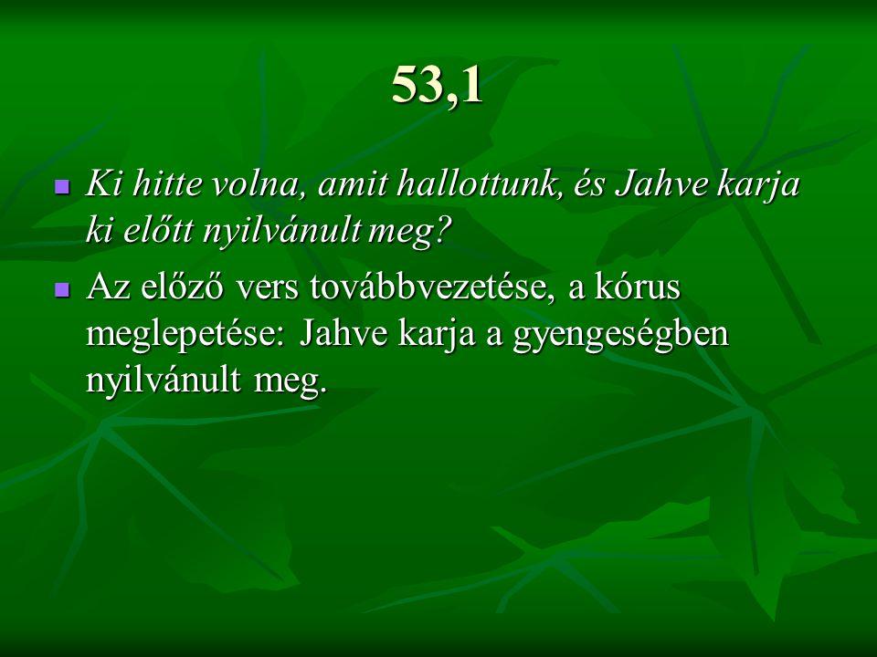 53,1 Ki hitte volna, amit hallottunk, és Jahve karja ki előtt nyilvánult meg