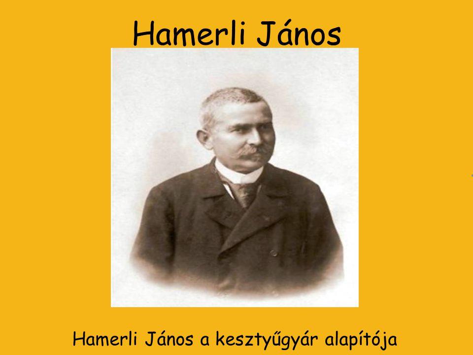 Hamerli János a kesztyűgyár alapítója