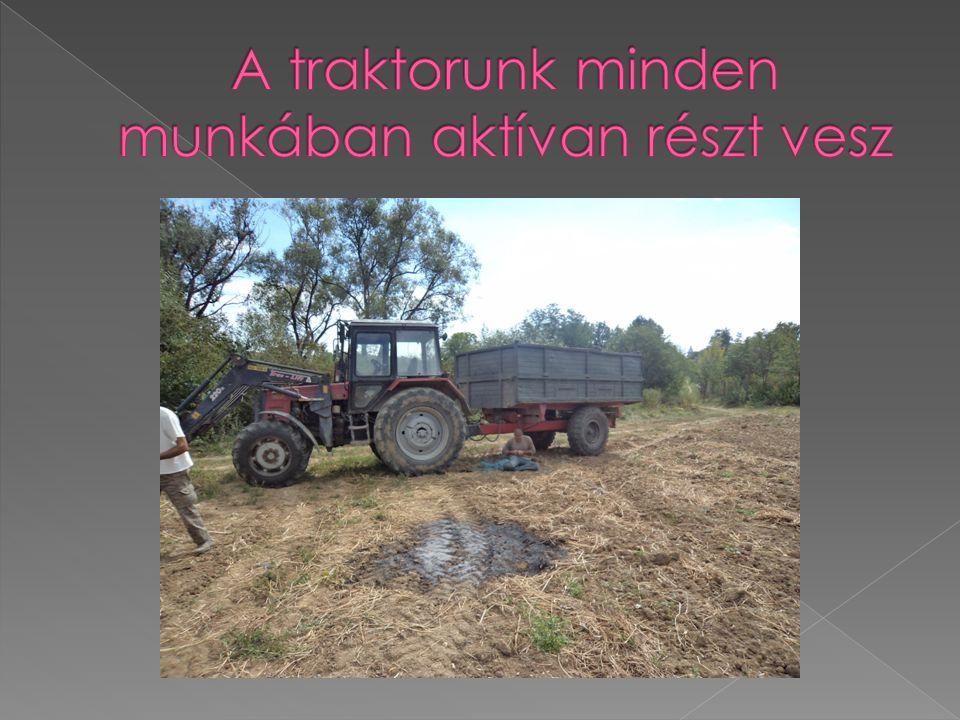 A traktorunk minden munkában aktívan részt vesz