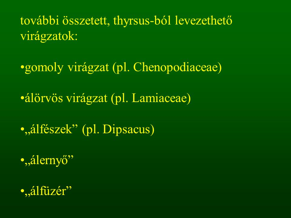 további összetett, thyrsus-ból levezethető virágzatok: