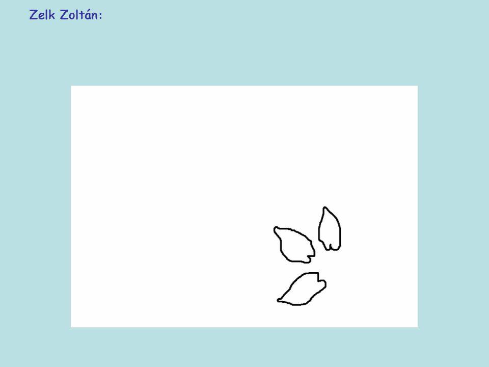 Zelk Zoltán: