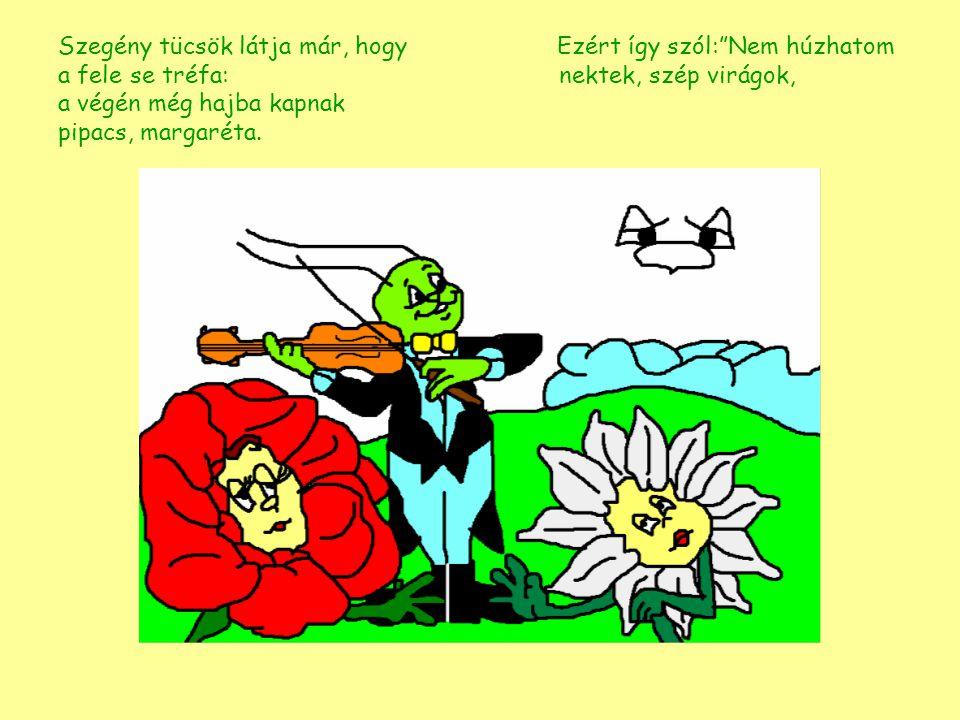 Szegény tücsök látja már, hogy Ezért így szól: Nem húzhatom a fele se tréfa: nektek, szép virágok, a végén még hajba kapnak pipacs, margaréta.