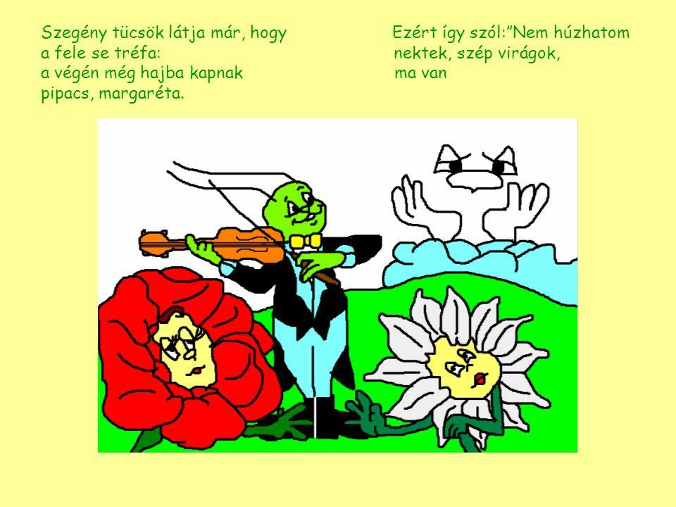Szegény tücsök látja már, hogy Ezért így szól: Nem húzhatom a fele se tréfa: nektek, szép virágok, a végén még hajba kapnak ma van pipacs, margaréta.