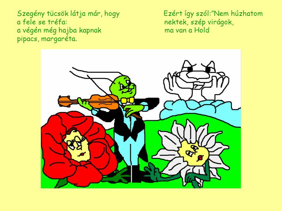 Szegény tücsök látja már, hogy Ezért így szól: Nem húzhatom a fele se tréfa: nektek, szép virágok, a végén még hajba kapnak ma van a Hold pipacs, margaréta.