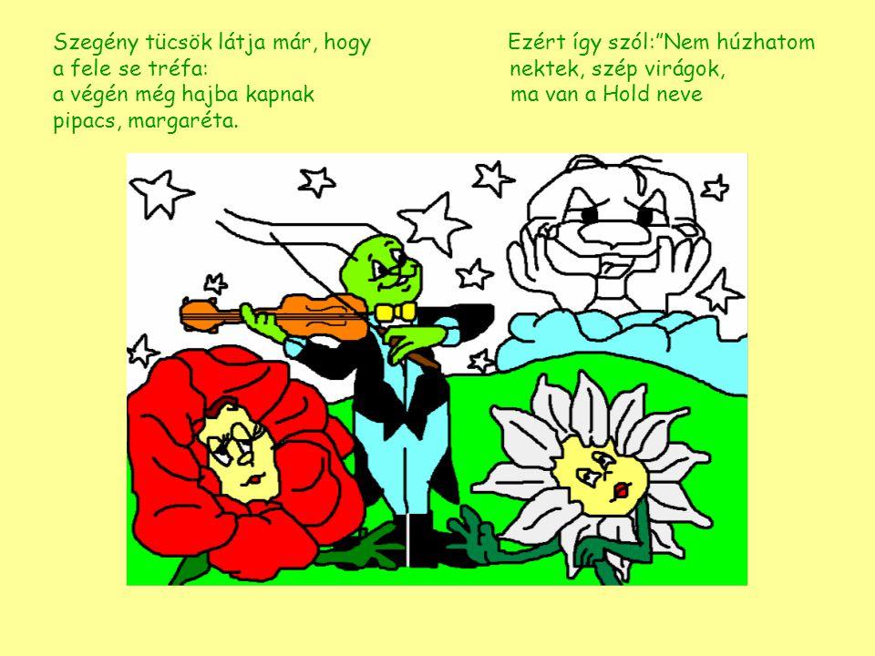 Szegény tücsök látja már, hogy Ezért így szól: Nem húzhatom a fele se tréfa: nektek, szép virágok, a végén még hajba kapnak ma van a Hold neve pipacs, margaréta.