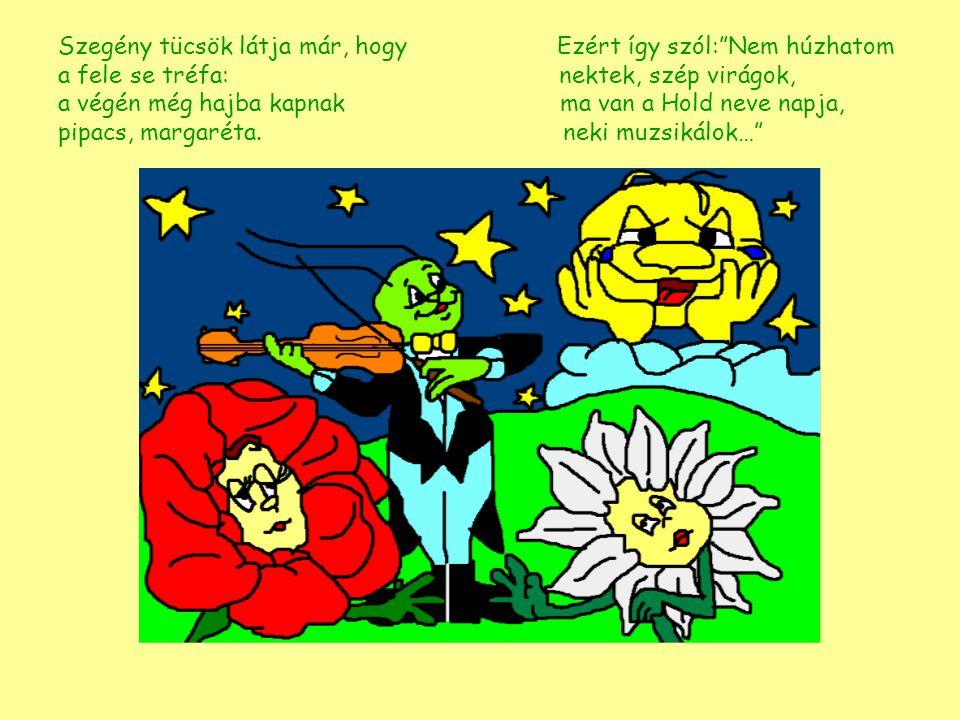 Szegény tücsök látja már, hogy Ezért így szól: Nem húzhatom a fele se tréfa: nektek, szép virágok, a végén még hajba kapnak ma van a Hold neve napja, pipacs, margaréta.