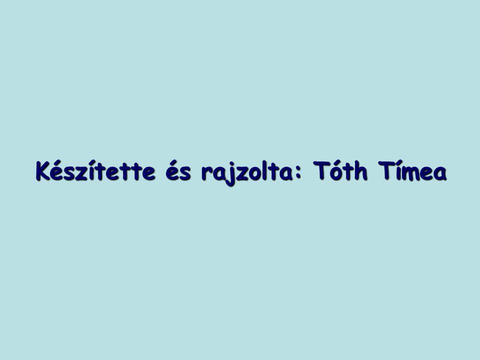 Készítette és rajzolta: Tóth Tímea