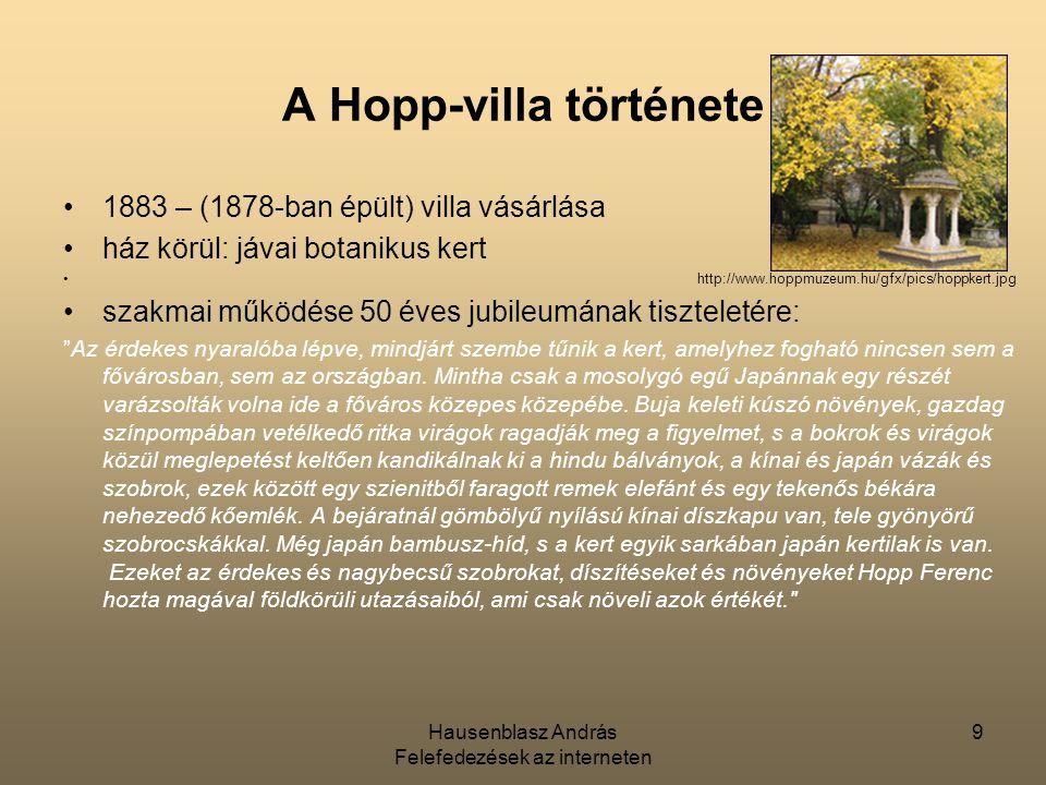 A Hopp-villa története