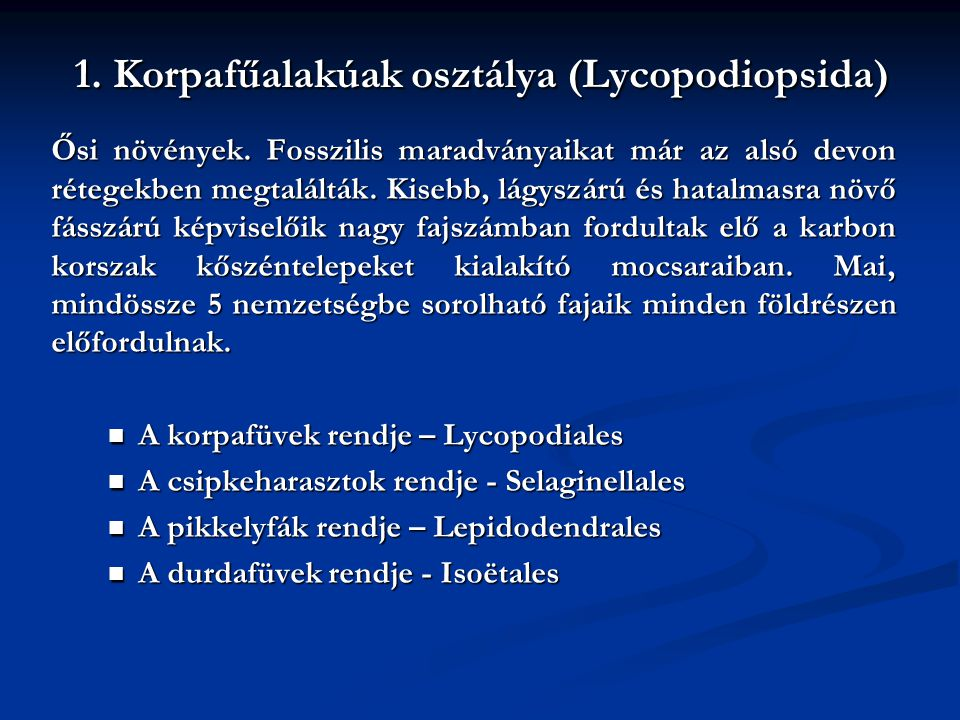 1. Korpafűalakúak osztálya (Lycopodiopsida)