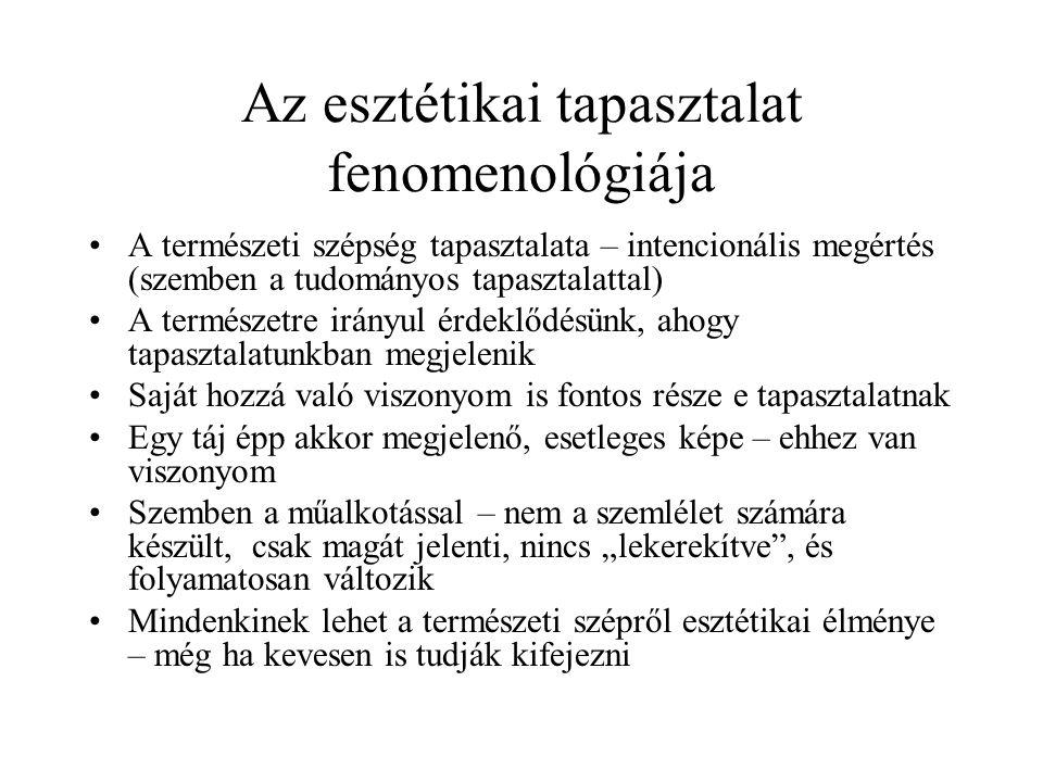 Az esztétikai tapasztalat fenomenológiája