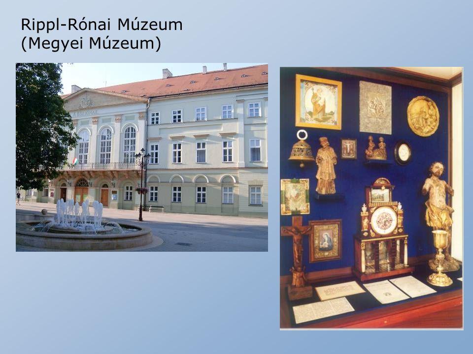 Rippl-Rónai Múzeum (Megyei Múzeum)