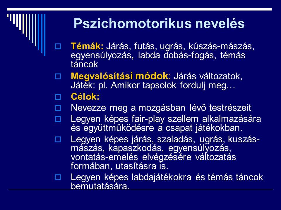 Pszichomotorikus nevelés