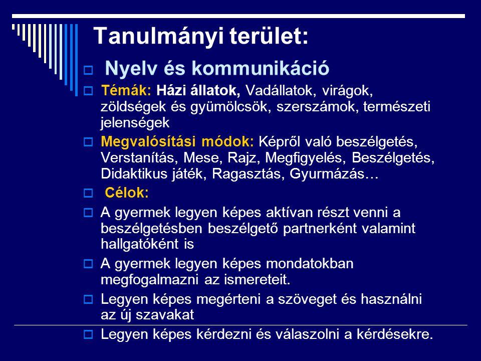 Tanulmányi terület: Nyelv és kommunikáció