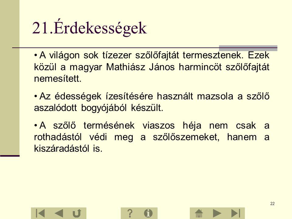 21.Érdekességek A világon sok tízezer szőlőfajtát termesztenek. Ezek közül a magyar Mathiász János harmincöt szőlőfajtát nemesített.