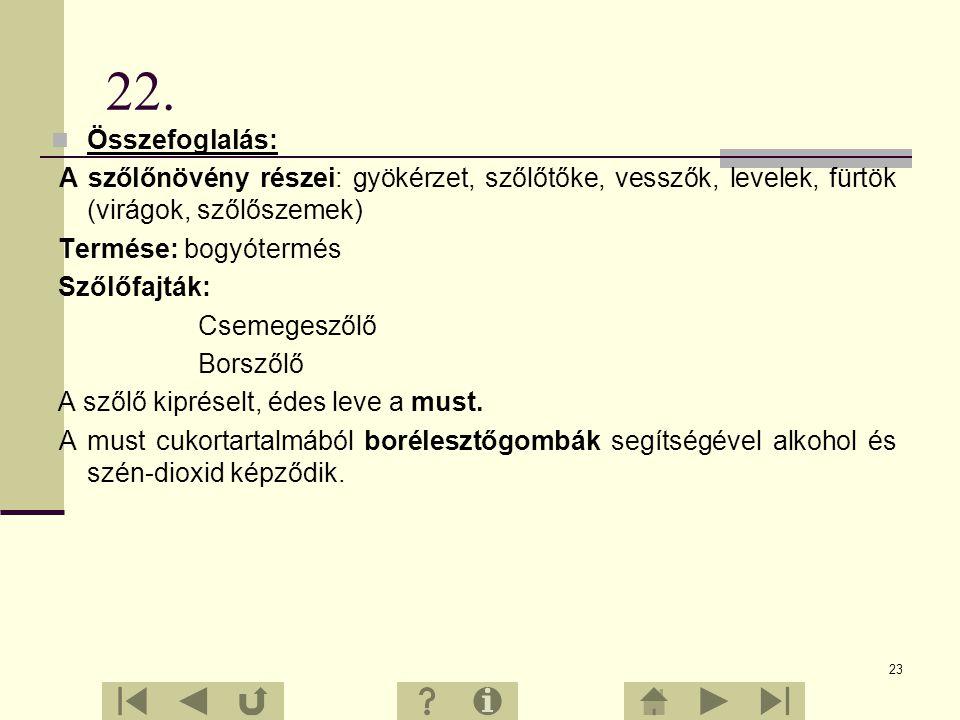 22. Összefoglalás: A szőlőnövény részei: gyökérzet, szőlőtőke, vesszők, levelek, fürtök (virágok, szőlőszemek)