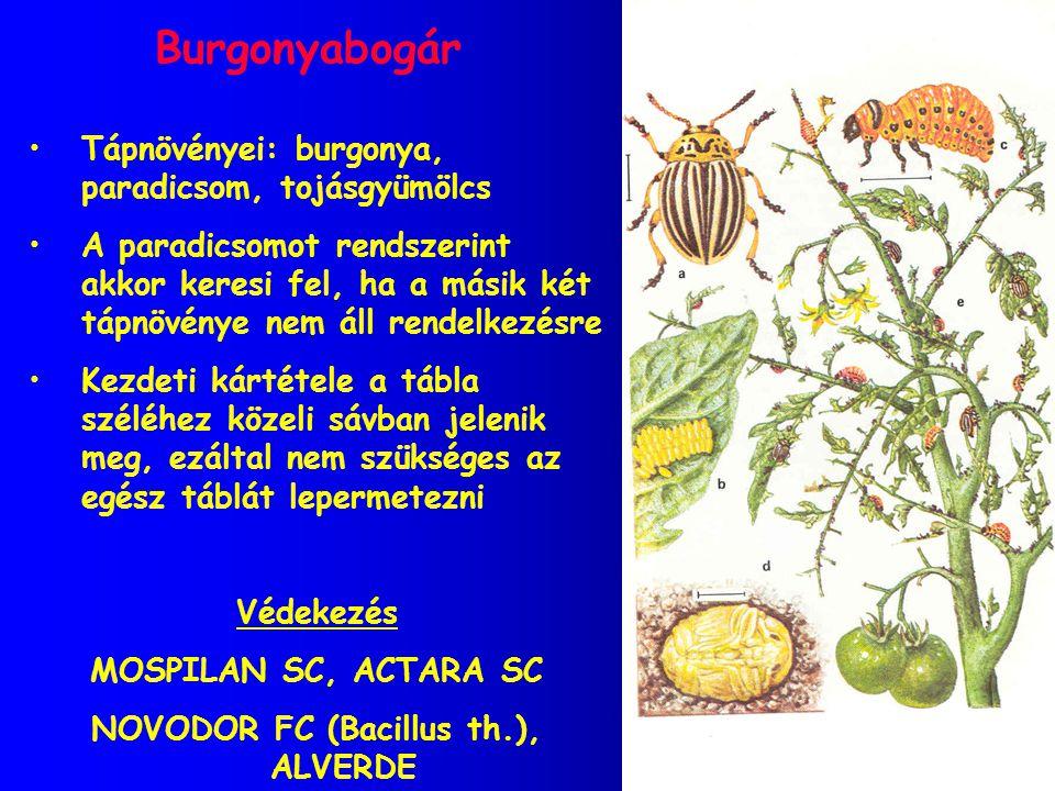 NOVODOR FC (Bacillus th.), ALVERDE