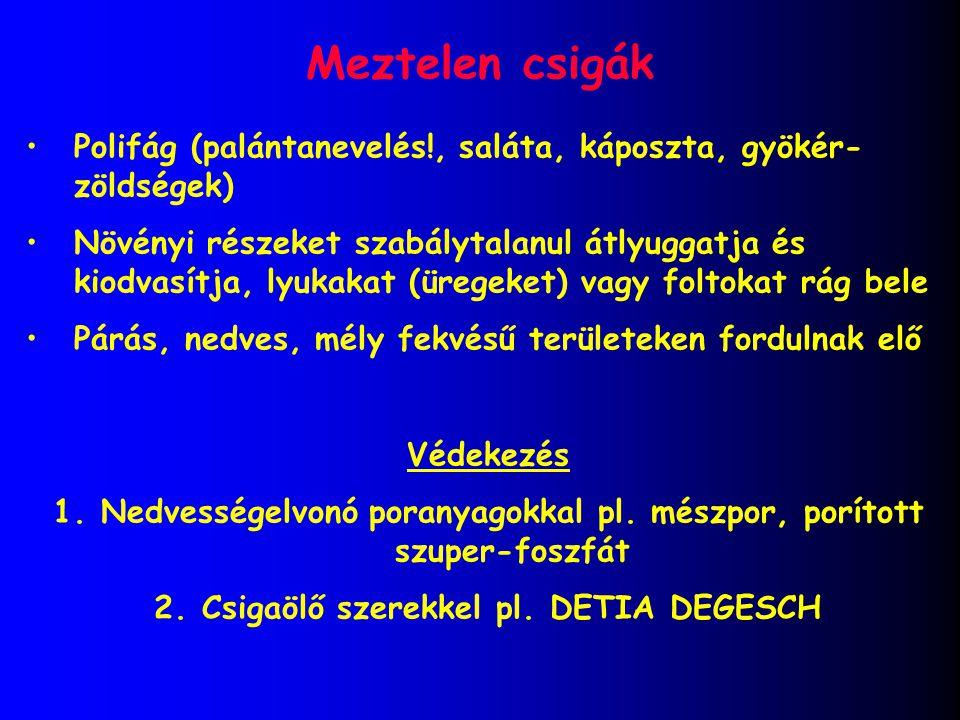 Meztelen csigák Polifág (palántanevelés!, saláta, káposzta, gyökér-zöldségek)