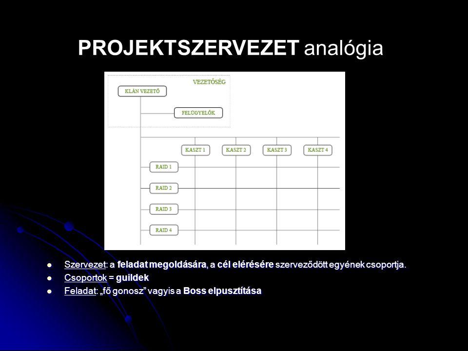 PROJEKTSZERVEZET analógia
