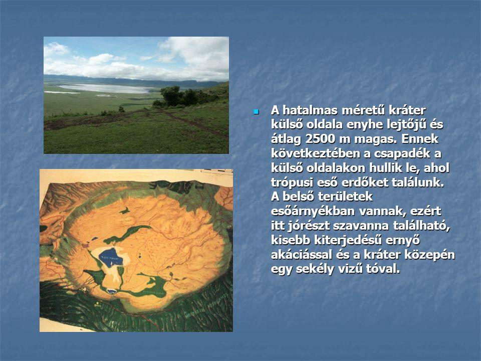 A hatalmas méretű kráter külső oldala enyhe lejtőjű és átlag 2500 m magas.