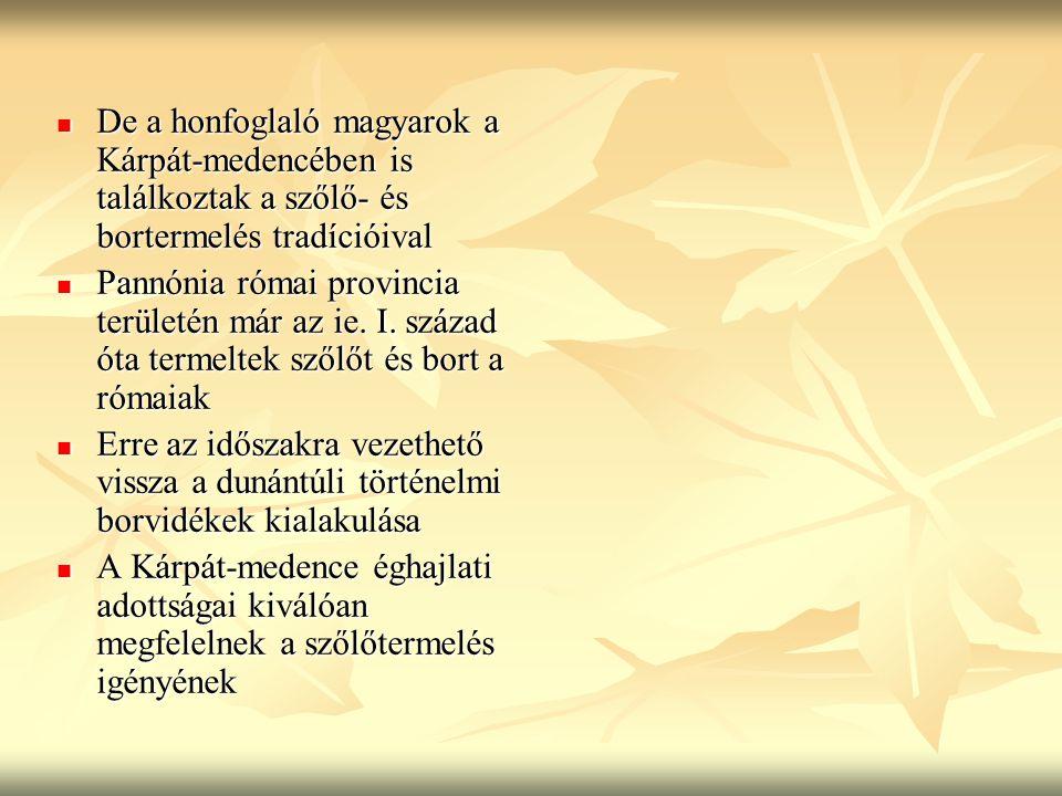 De a honfoglaló magyarok a Kárpát-medencében is találkoztak a szőlő- és bortermelés tradícióival