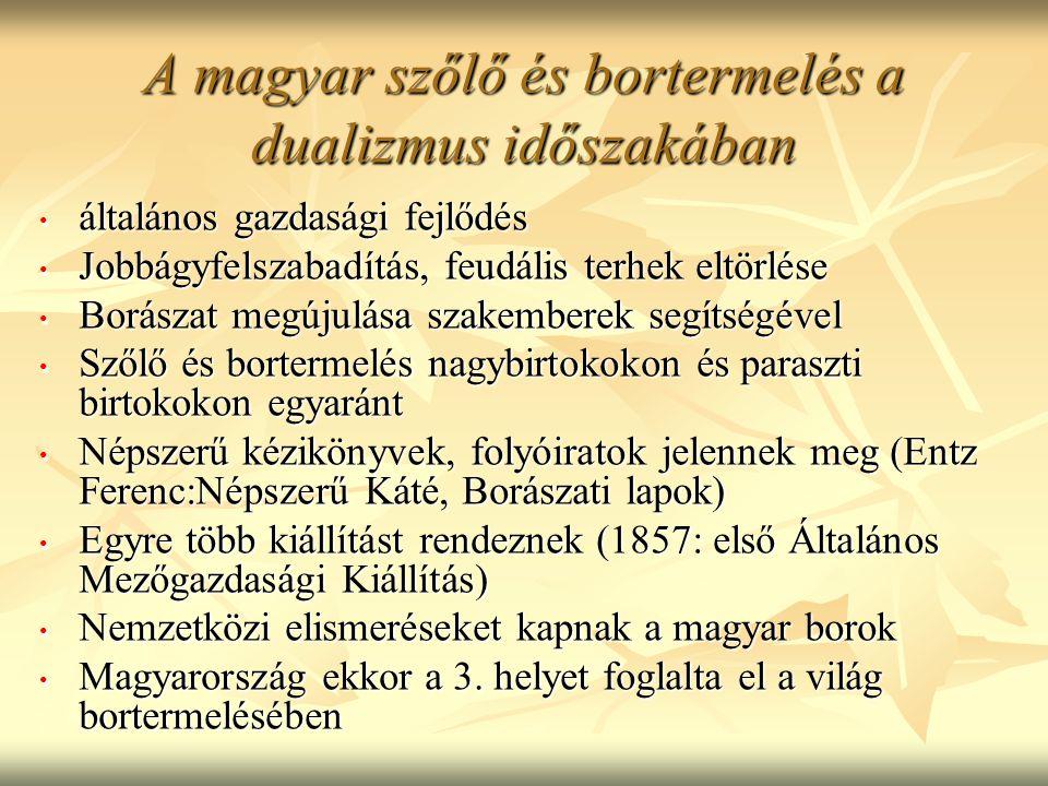 A magyar szőlő és bortermelés a dualizmus időszakában