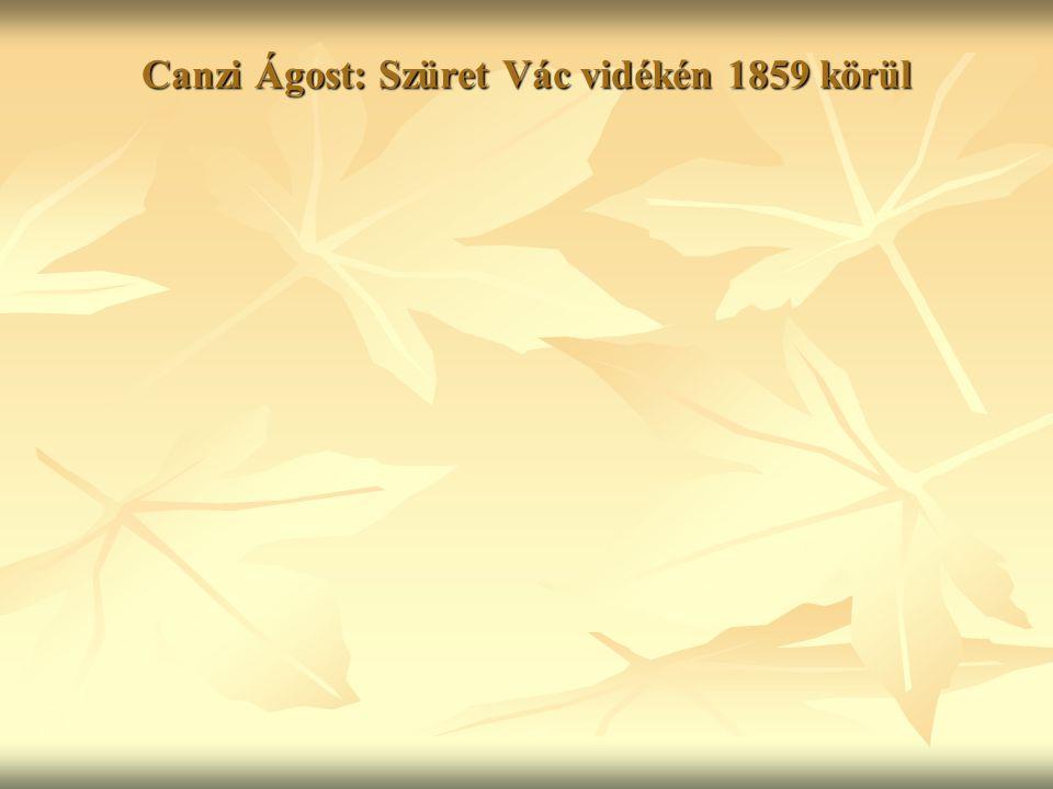 Canzi Ágost: Szüret Vác vidékén 1859 körül
